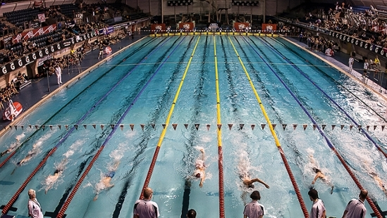Swimming Event Management Group Opportunity