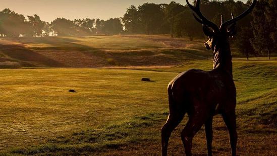 Golf: English & Welsh Championships 2021-22